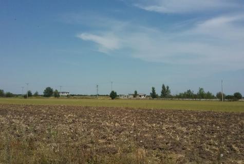 Giurgiu, Spatiu industrial